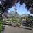 Gartenpflanzen Daepp