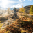 ALPINA Optik + Sport AG
