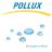 Pollux Reinigungsservice AG