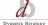 Dynamik Beratung AG